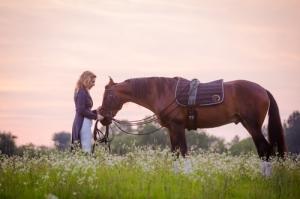 horse IMG_7150
