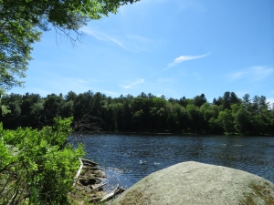 Scenic pond.